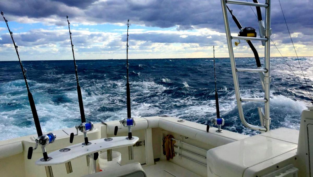 Фото: VIP Рыбалка на круизном катере