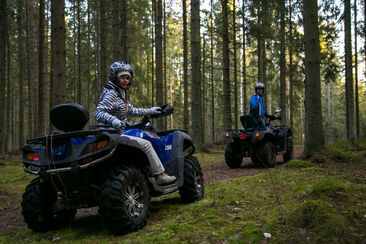 Фото: Квадро-тур по лесу