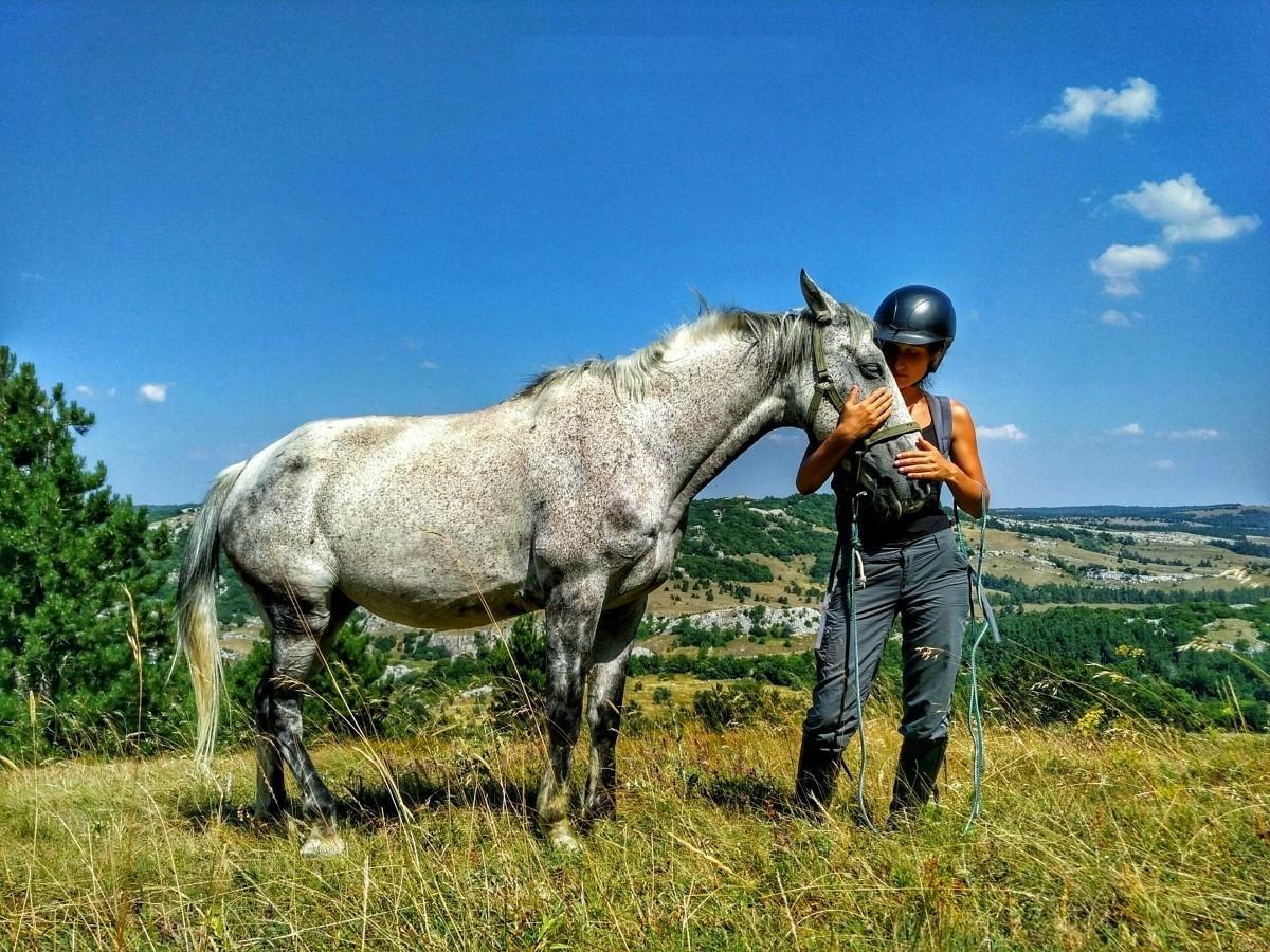 Фото: Подъем на плато Ай-Петри на лошадях