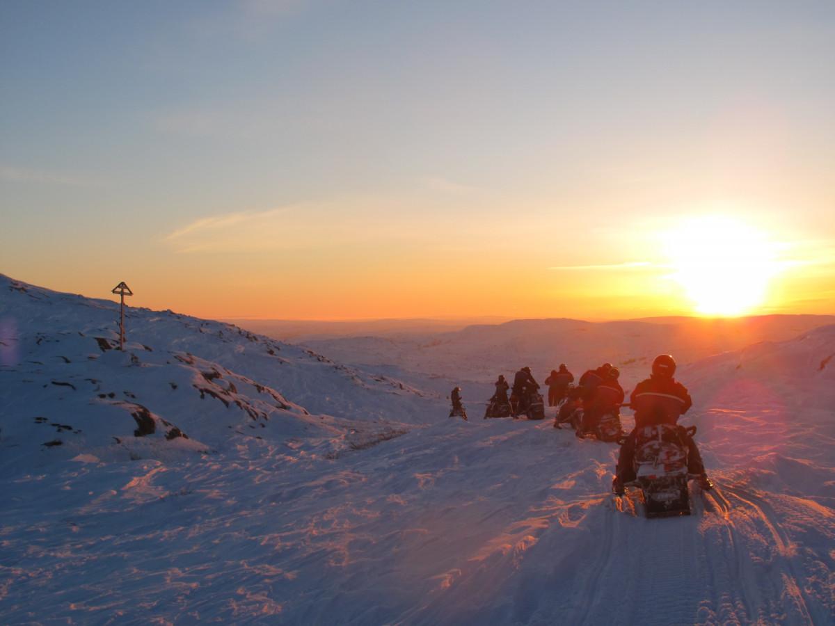 Фото: Сафари «Под Арктическим небом»