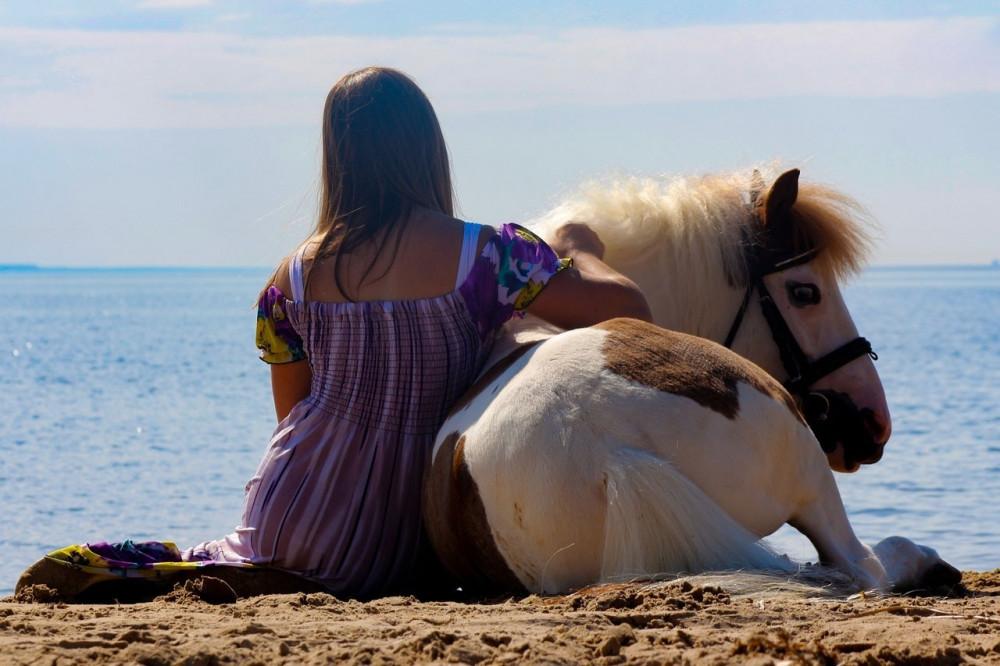 Фото: Прогулка на лошадях с купанием