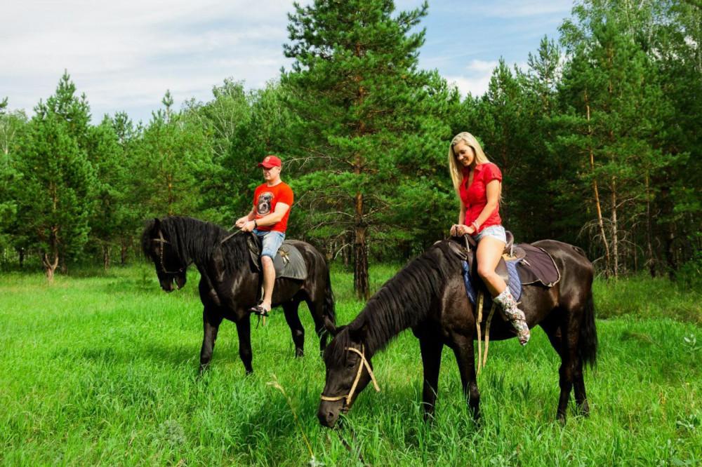 Фото: Лесная прогулка на лошадях