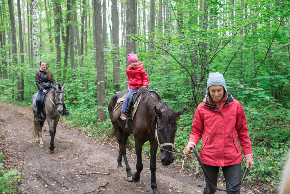 Фото: Прогулка по лесу на лошадях в Казани