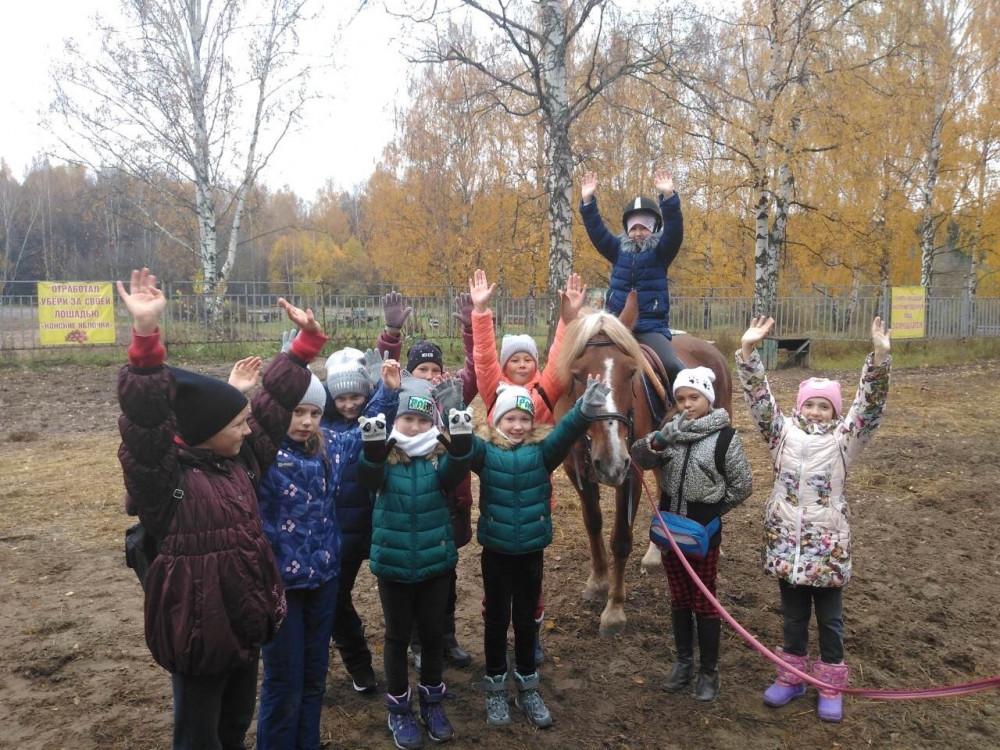 Фото: Экскурсия на конюшню