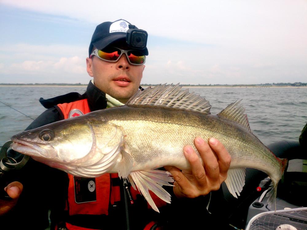 Фото: Рыбалка на судака и стайного окуня