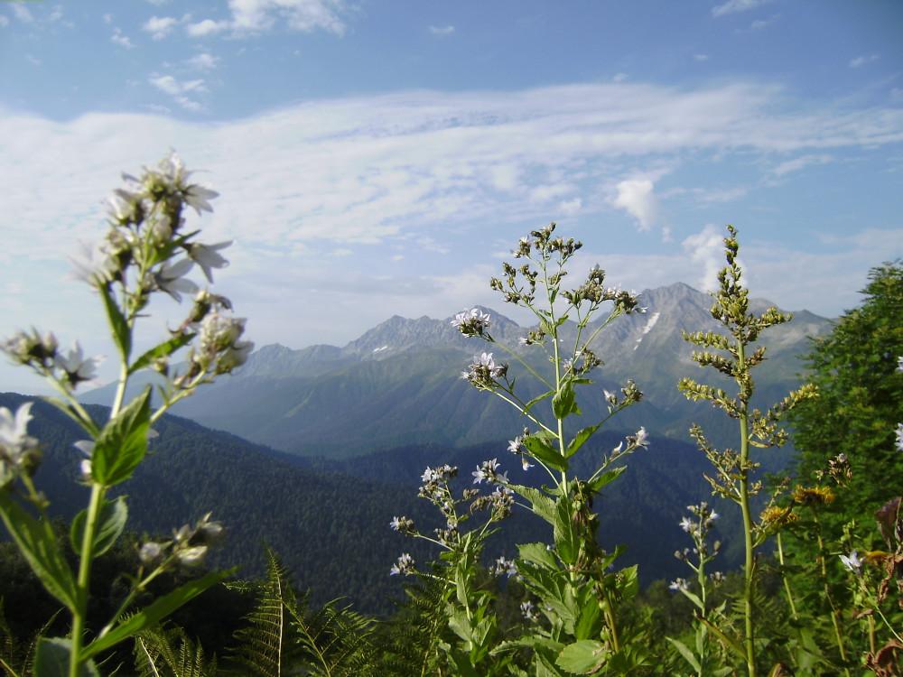 Фото: Поход на вершину Ачишхо