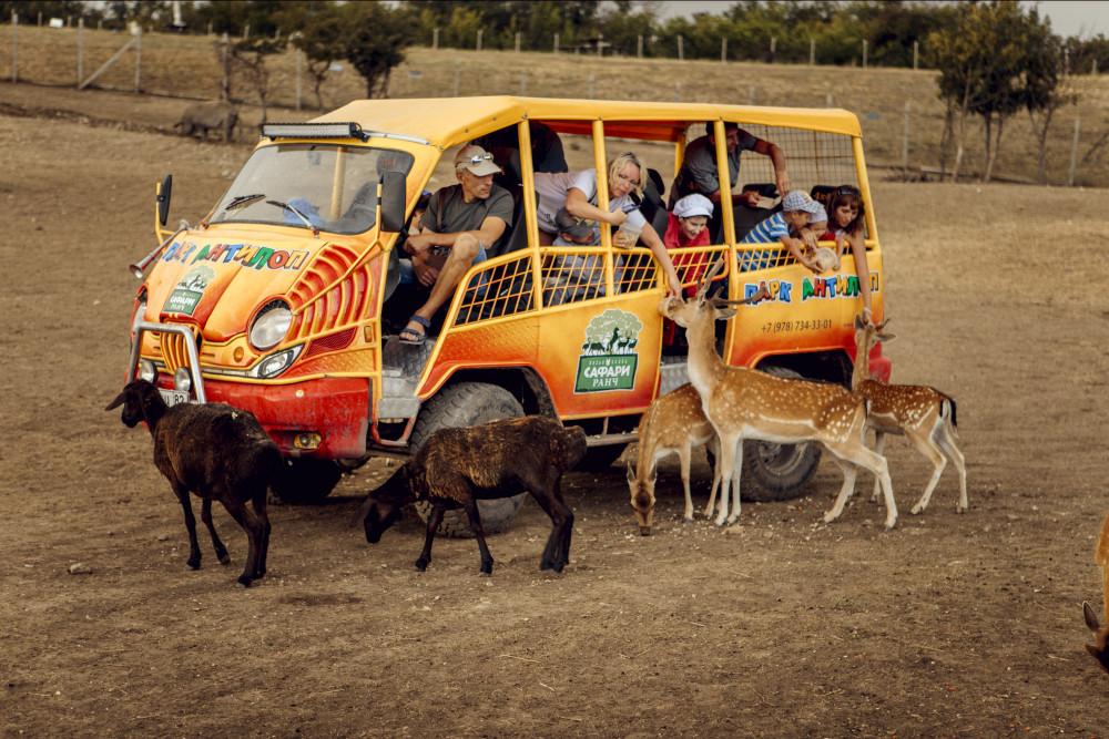 Фото:  Джипинг на Сафари Ранч «Парк Антилоп»