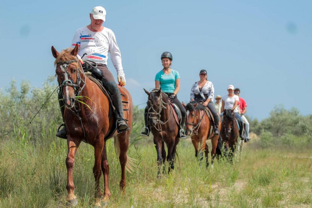Фото: Прогулка верхом на лошади