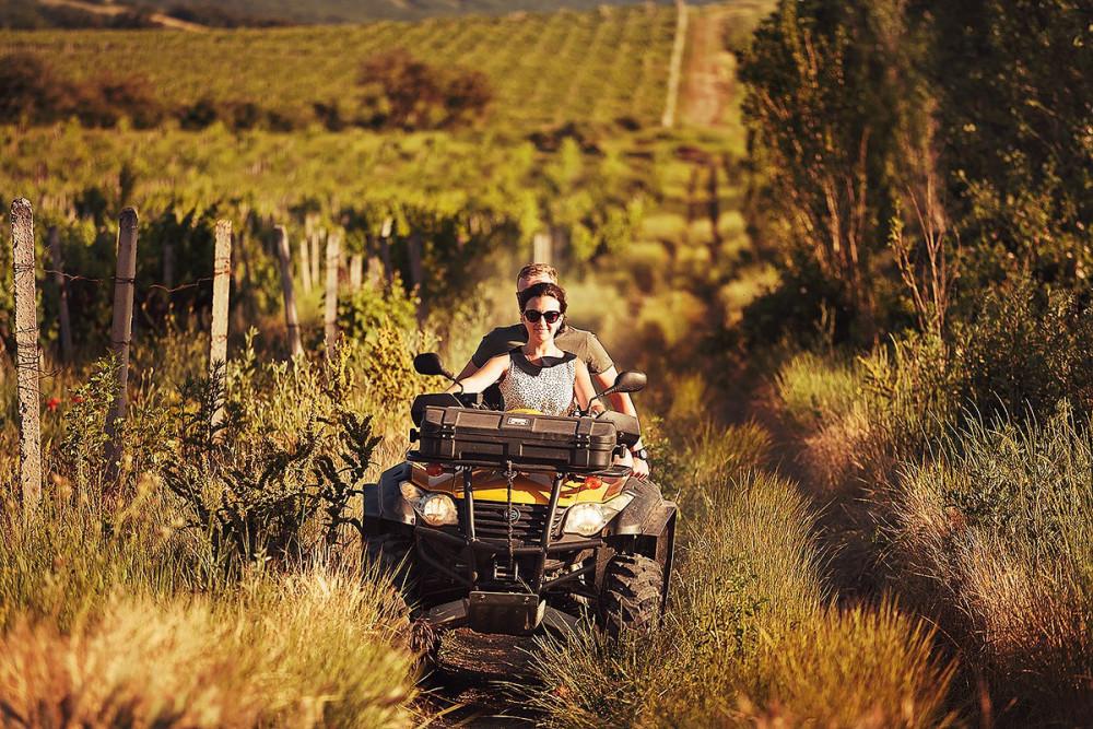Фото: Покатушки на квадроциклах по виноградникам