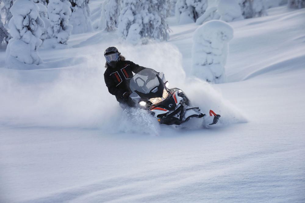 Фото: Прогулка на снегоходах по лесу