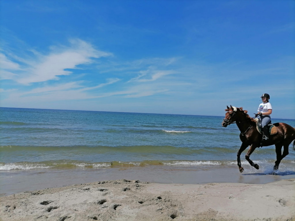 Фото: Вдоль моря верхом на лошади