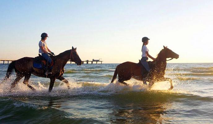 Фото: Конный поход к морю