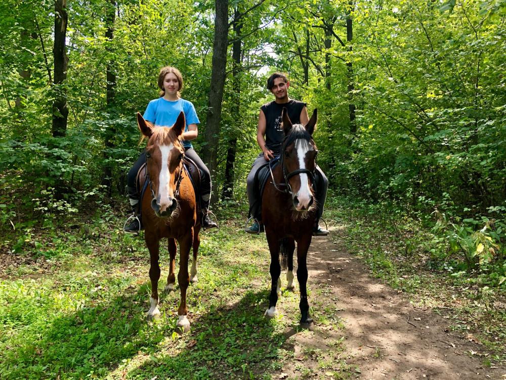 Фото: Конные прогулки в лесу
