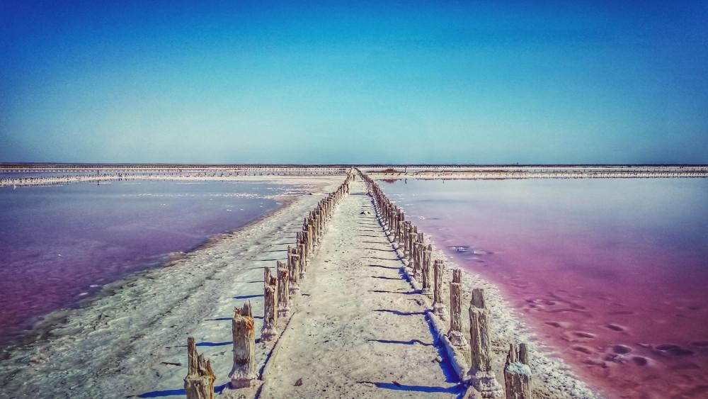 Фото: Розовое озеро у Чёрного моря