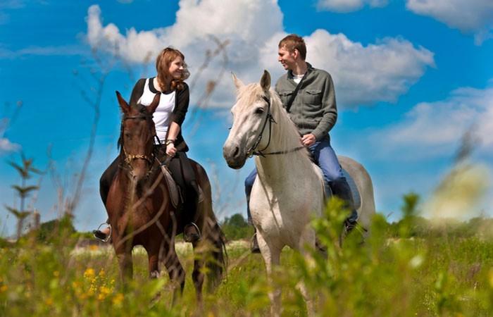 Фото: Конные прогулки в Геленджике