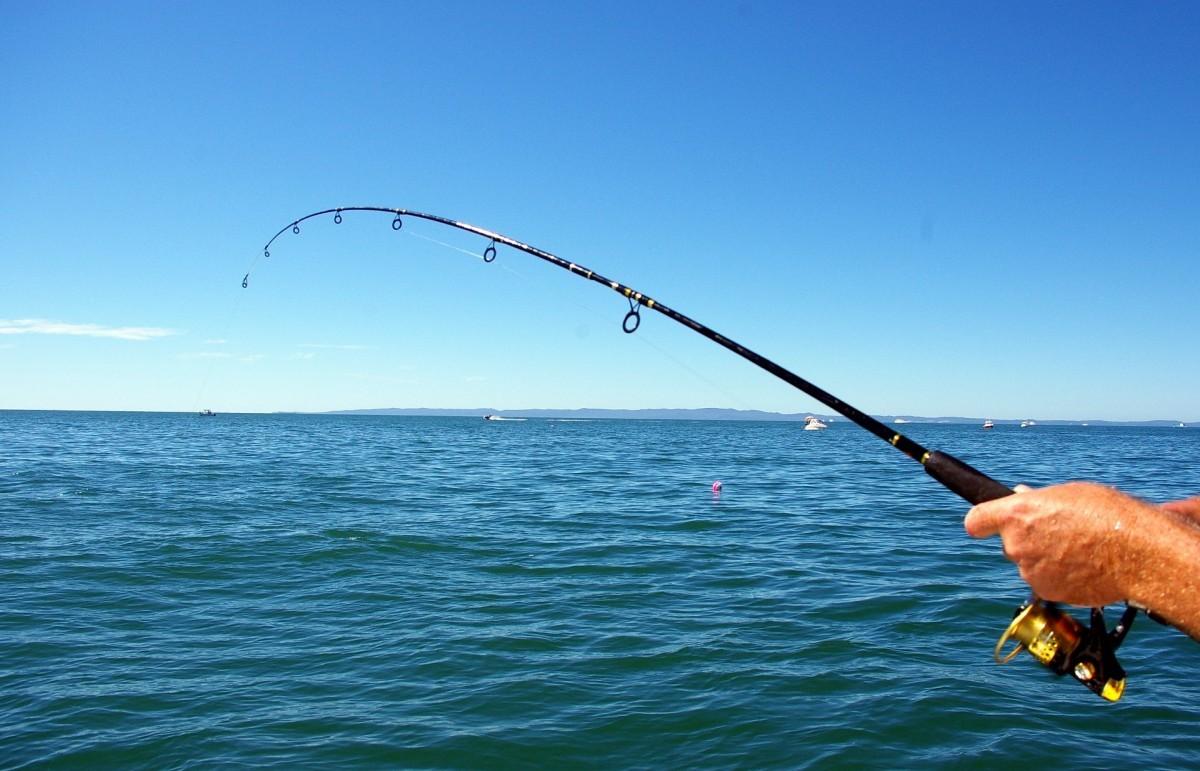 Фото: Рыбалка на яхте в Сочи