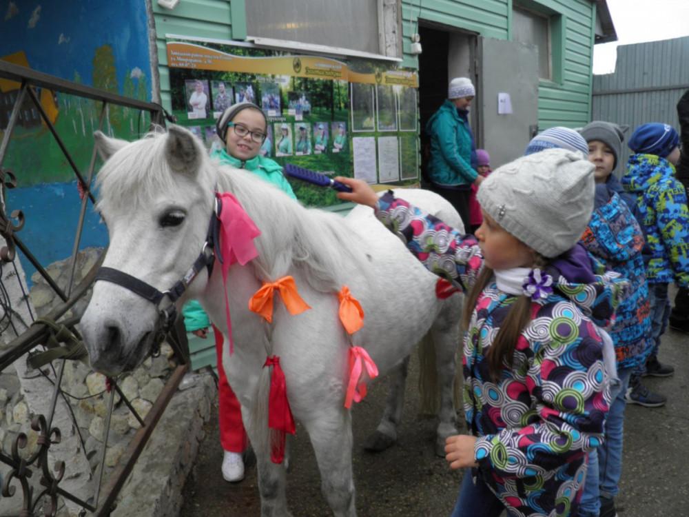 Фото: Экскурсия по конной усадьбе