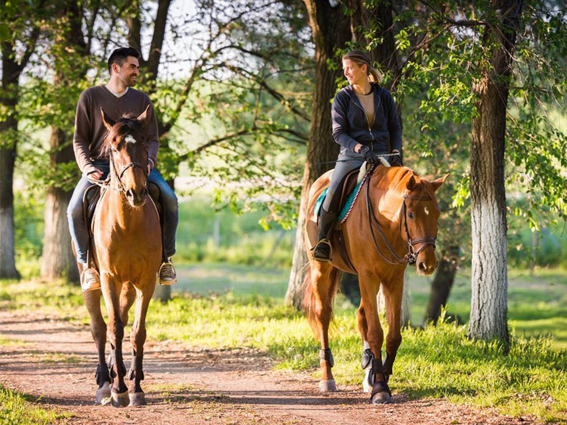 Конные прогулки в Екатеринбурге