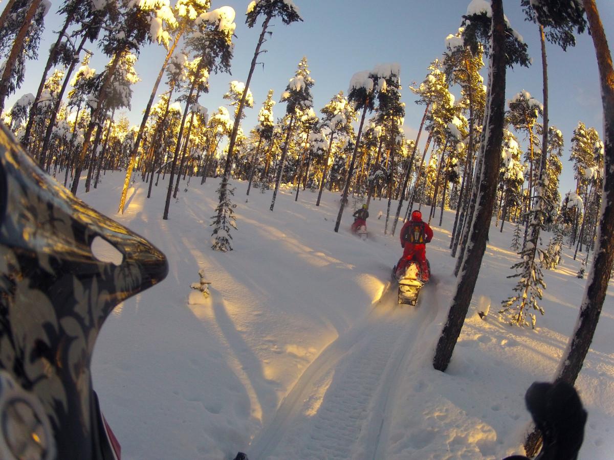 Туры на снегоходах в Мурманске
