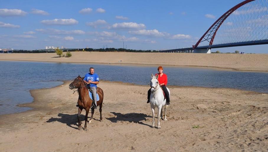 Катание на лошадях в Новосибирске