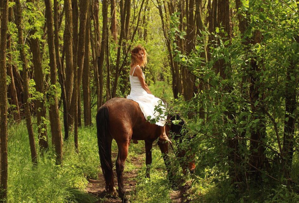 Прогулки на лошадях в Краснодаре