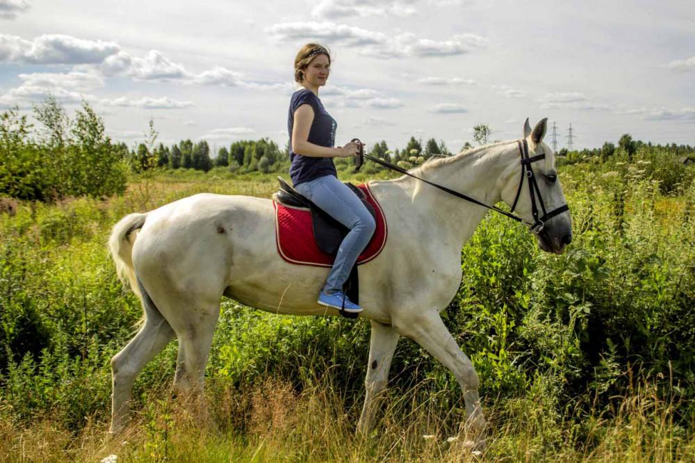 Конные прогулки в Нижнем Новгороде