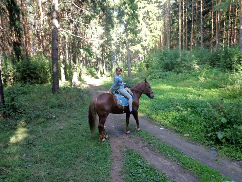 Конные прогулки в Ижевске
