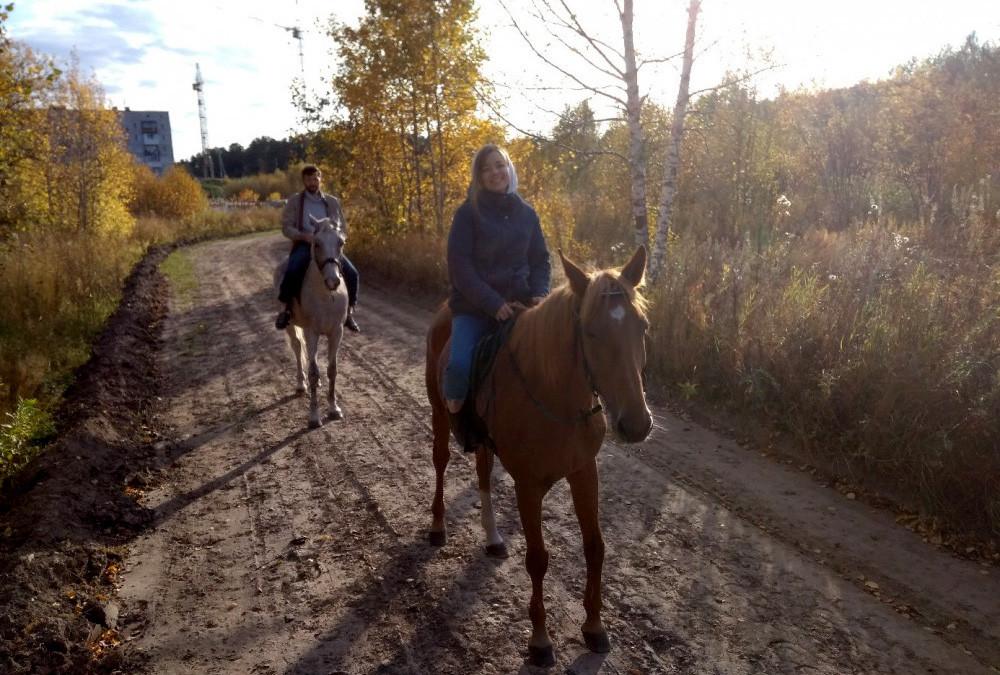 Прогулки на лошадях в Томске
