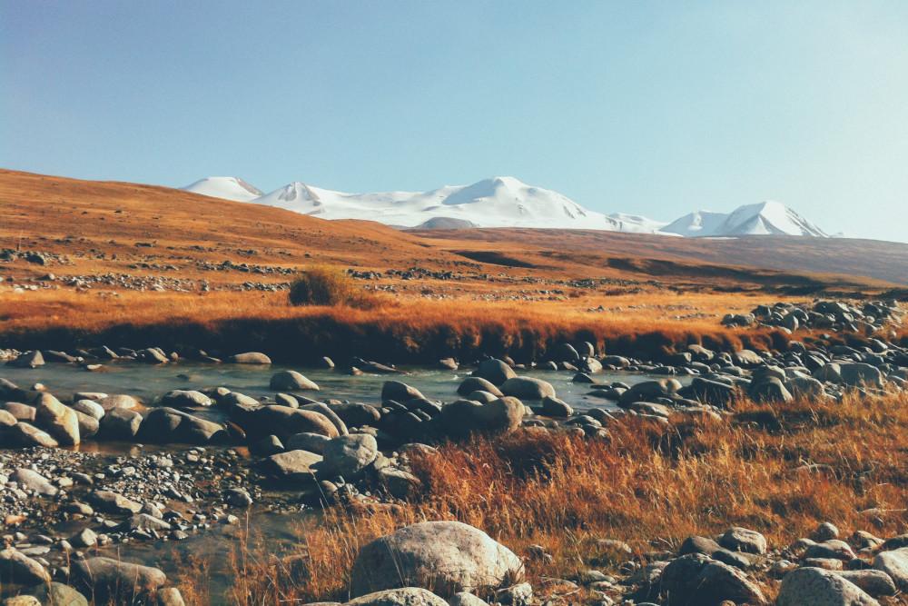 Экспедиции на Алтай