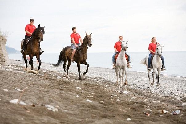 Конные прогулки в Лазаревском