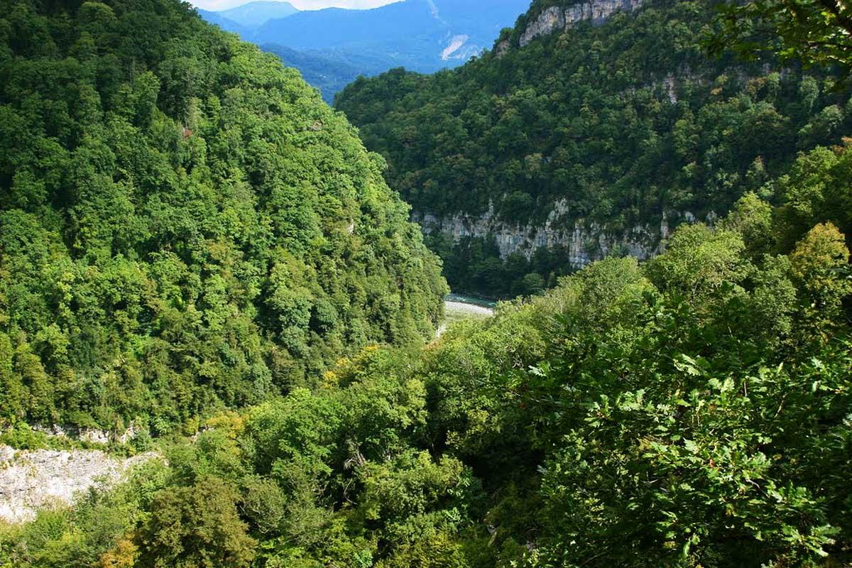 Фото: Дзыхринское ущелье