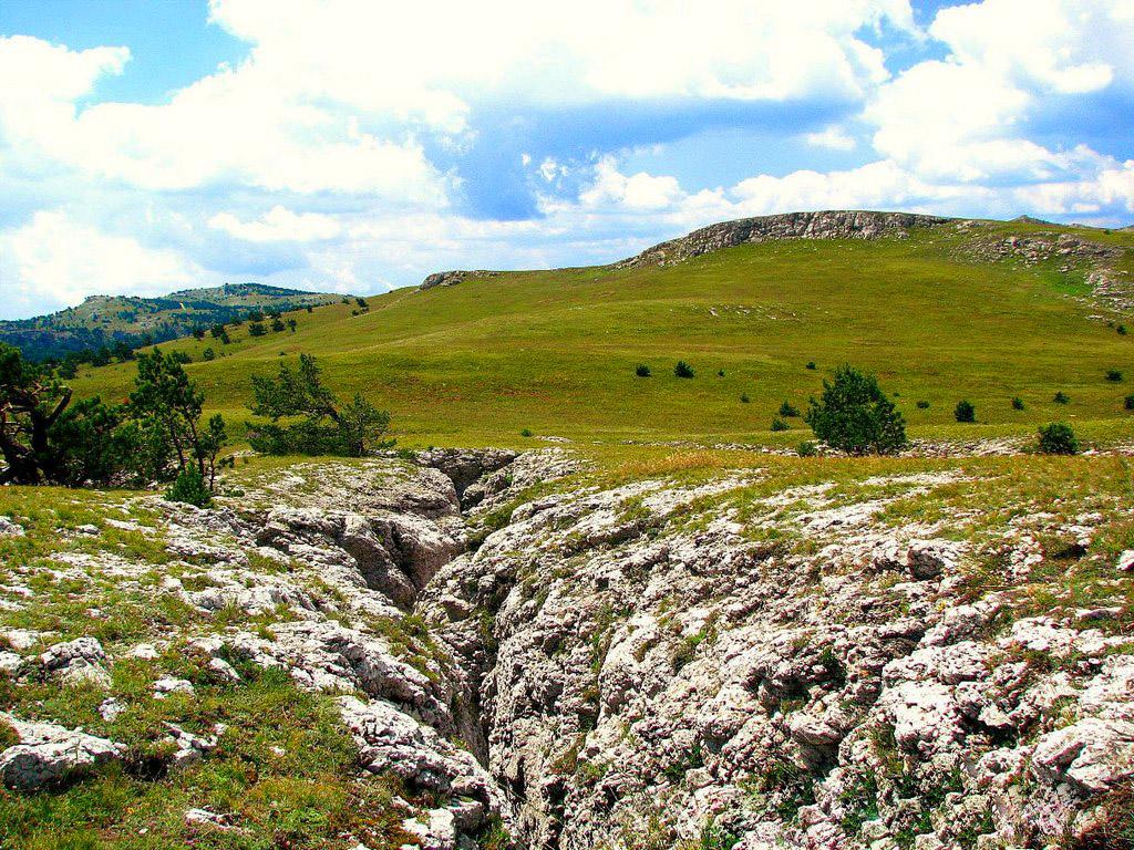 Фото: Крымский природный заповедник