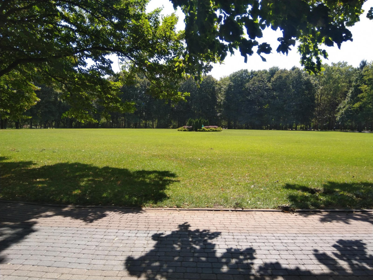 Фото: Ботанический сад им. И.С. Косенко