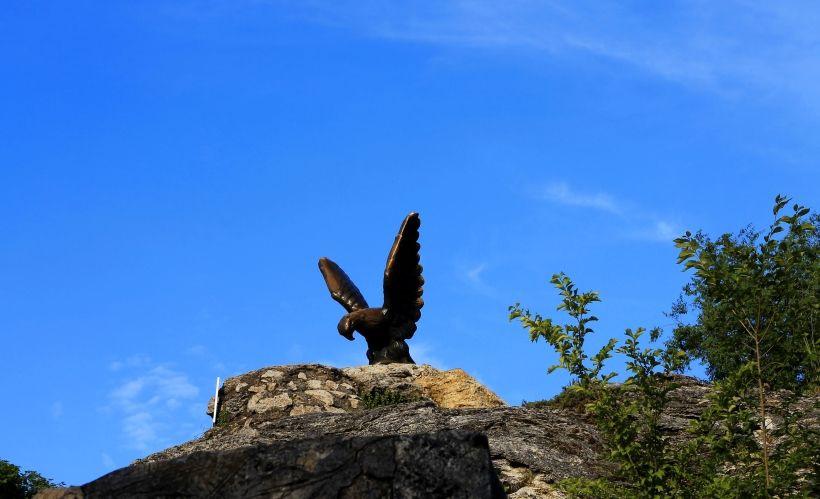 Фото: Пятигорский орел