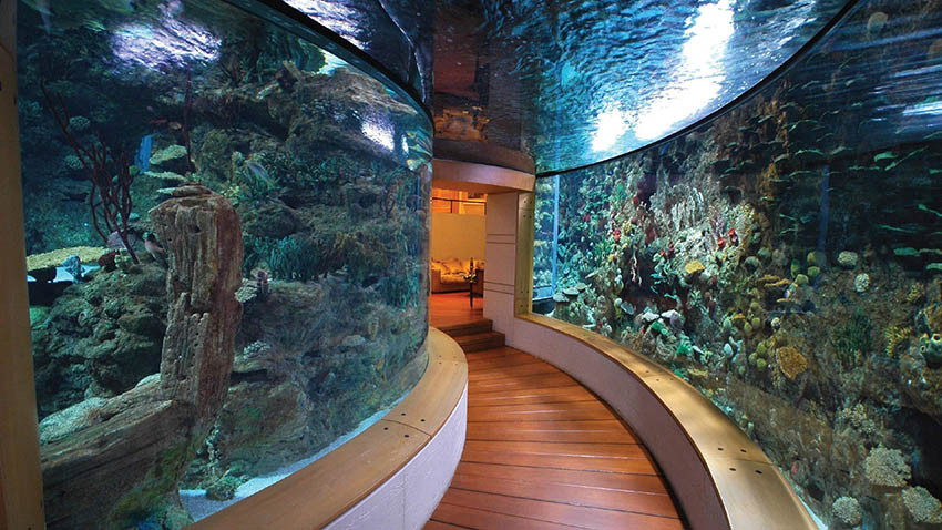 Фото: Дом-аквариум