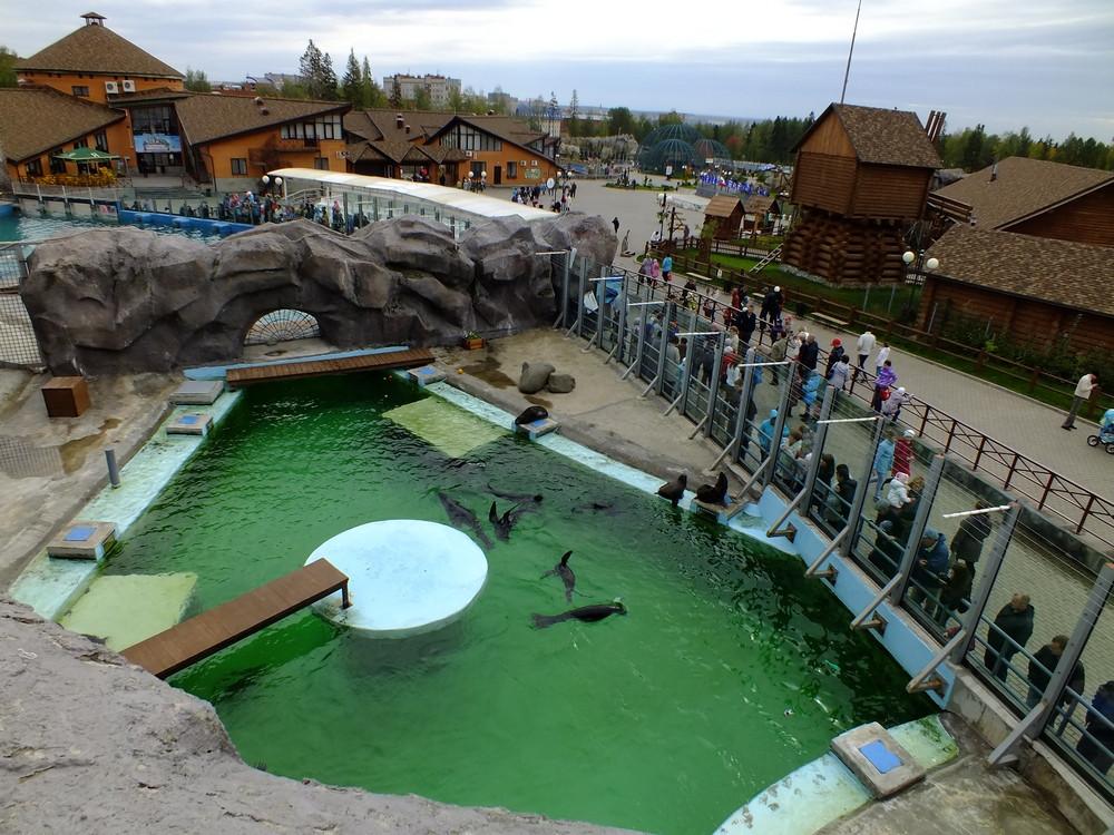 Фото: Ижевский зоопарк