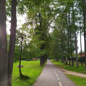 Фото: Парк культуры имени С. М. Кирова