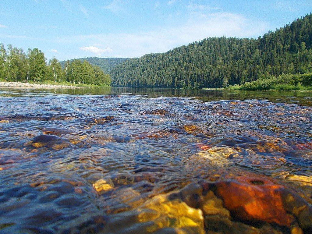 Фото: Река Томь