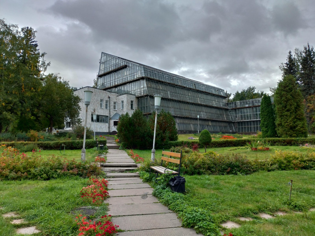 Фото: Сибирский ботанический сад