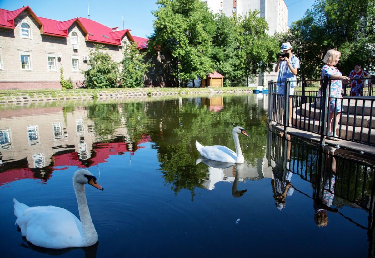 Фото: Парк Аксакова