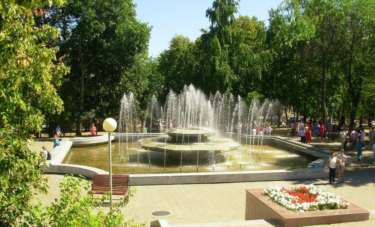 Фото: Сад Александра Матросова