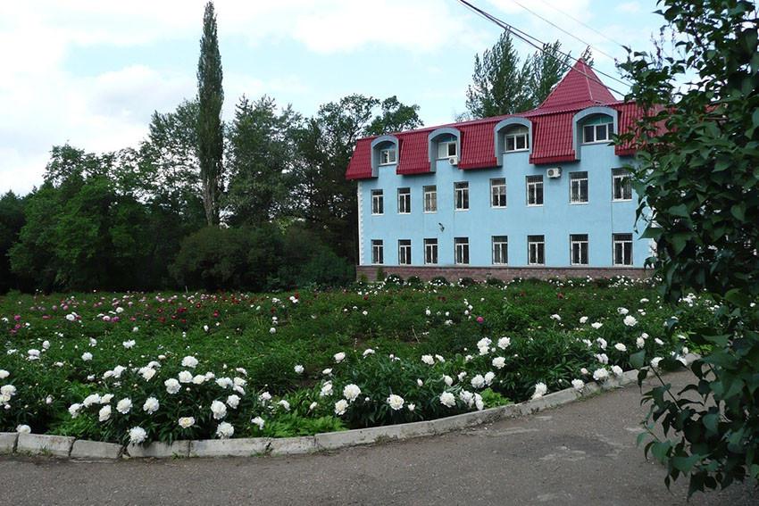 Фото: Уфимский ботанический сад